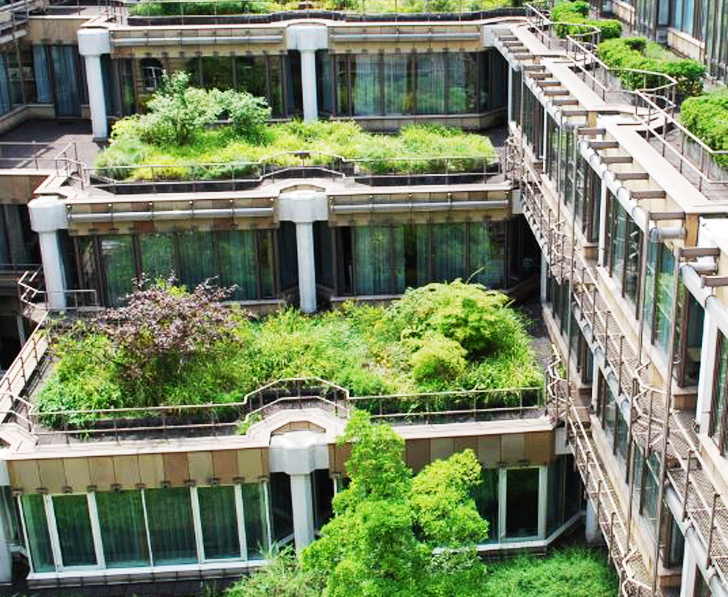 Germany-Green-Roof
