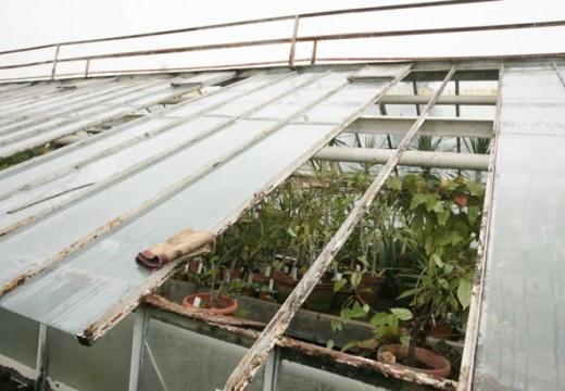 Ботаническата градина пострада от вятъра