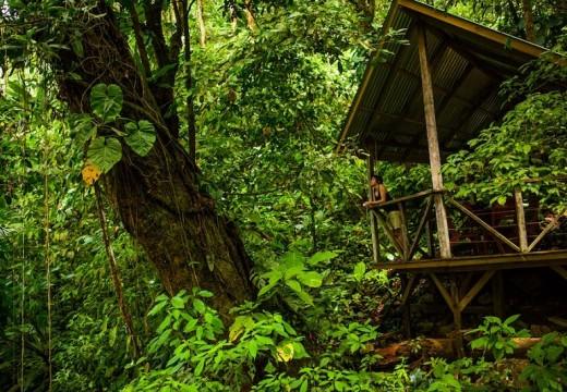 Да построиш село в джунглата