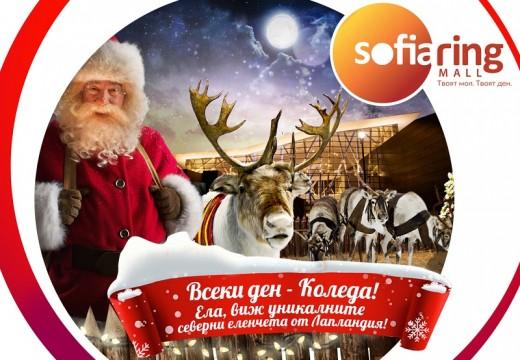 Фабрика за подаръци и истински елени в София Ринг Мол