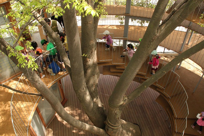 kindergarten-around-tree-zelkova-fuji-tezuka-architects-27