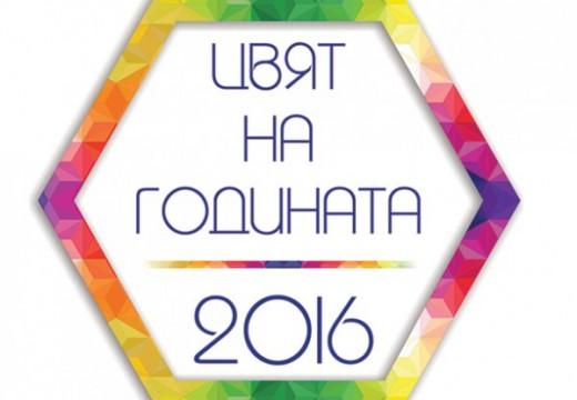 """Цветът на 2016 година е """"Нептун"""" от Оргахим"""