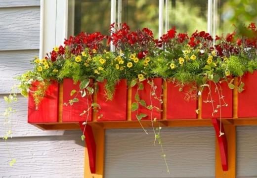 35+ пролетни идеи за дома и градината