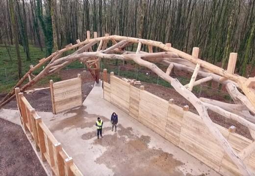 Навес за дърва от клони