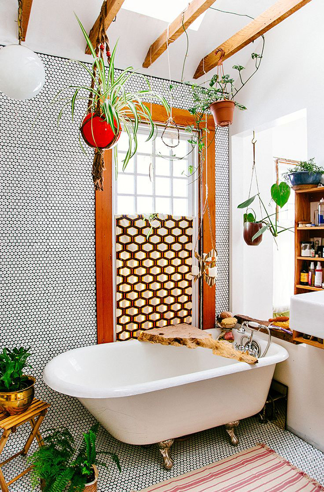 hanging-plants-in-bathroom-1
