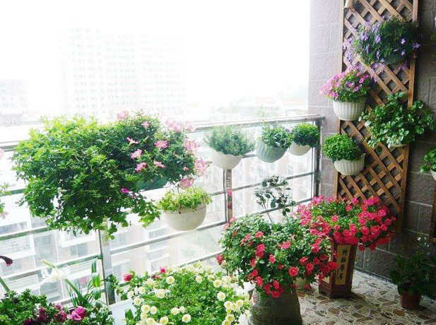 railing-design-for-balcony