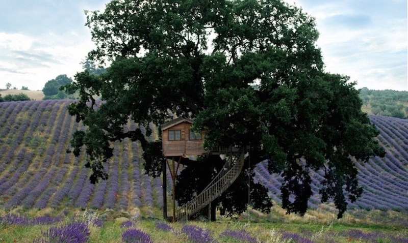 Farmhouse-La-Piantata-treehouse-2-1020x610