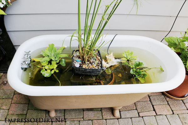 DIY-Bathtub-garden-pond-2