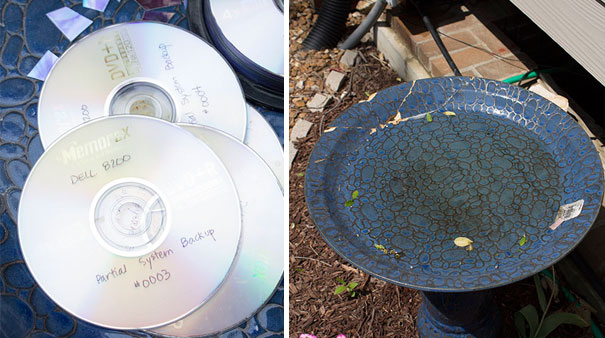 recycled-diy-old-cd-crafts-1-1__605