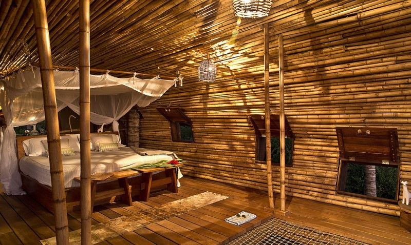 playa-viva-treehouse-bamboo-1020x610