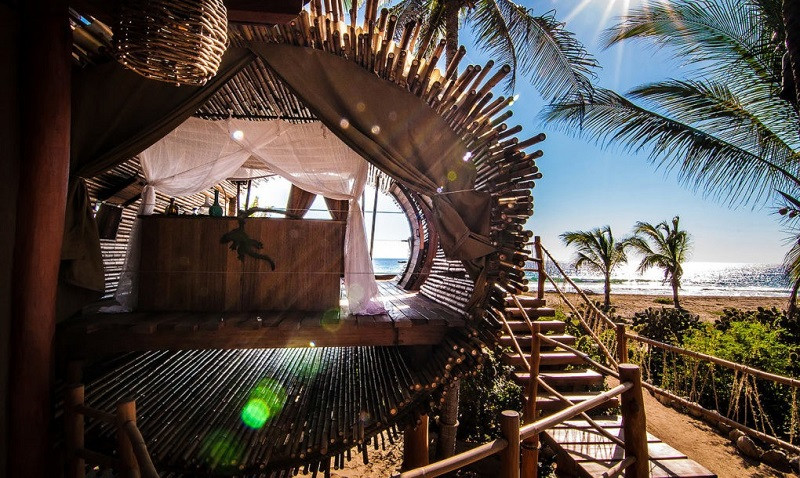 playa-viva-treehouse-design-1020x610