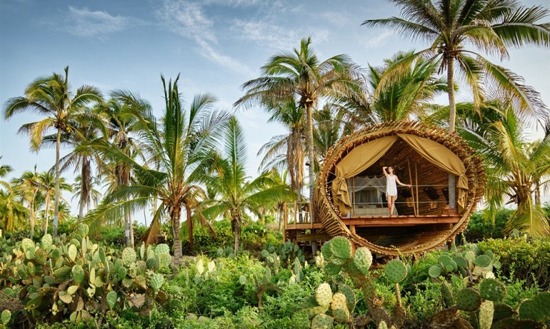 playa-viva-treehouse-mexico-1020x610