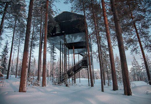 Хотел в клоните на дърво с гледки към Северното сияние