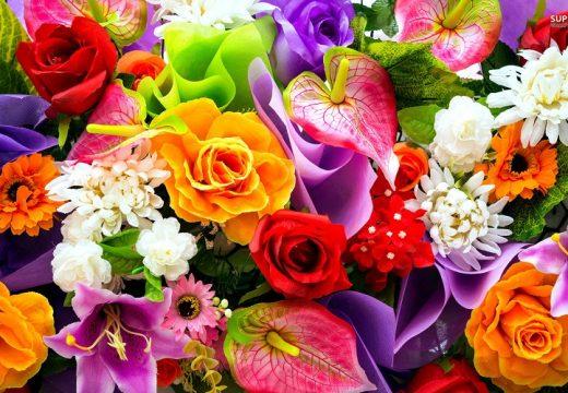 Днес празнуваме Цветница