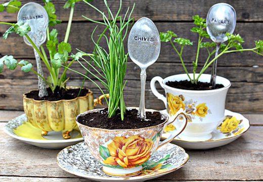 Вдъхнете нов живот в градината