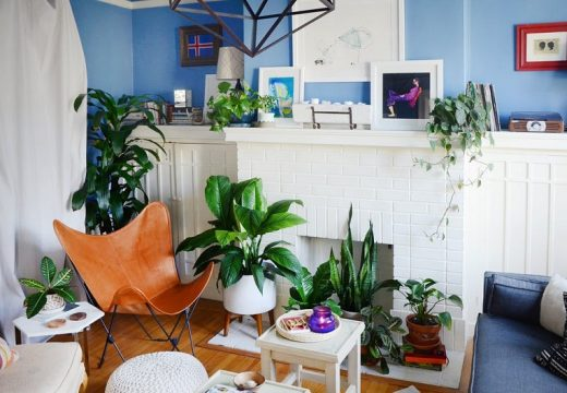 Дом изпълнен със зеленина