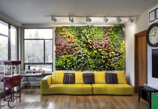 Идеи и съвети за създаване на вертикална градина