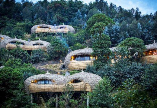Къщички в клоните са новият стандарт за еко-туризъм