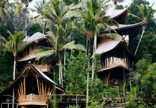 Сладки бамбукови къщички се крият в гората на Бали