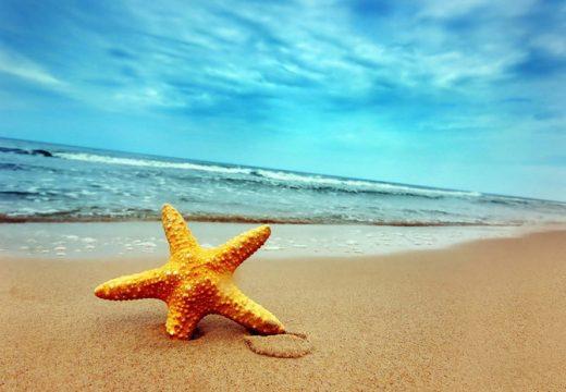 С 11% по-скъпа става почивката на морето