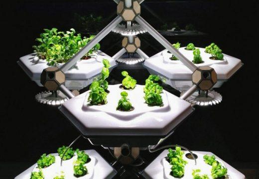 Отглеждаме жива градина с мобилно приложение (видео)