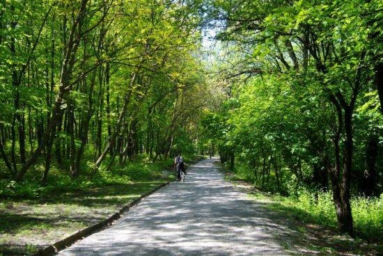 Влагат 10 млн. лева в Западен парк в София