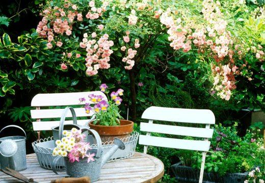 7-те златни правила за малък двор