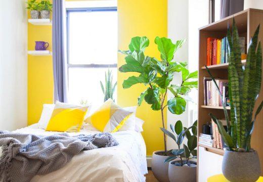 30+ идеи за отделяне на спалнята в едностаен апартамент