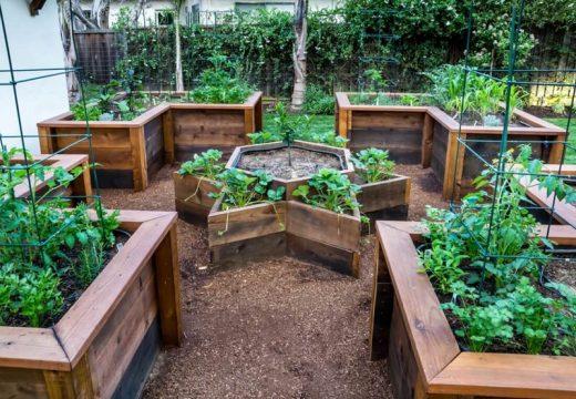 5 начина как да очертаем градината