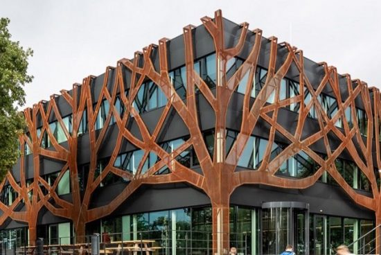 Училище е прегърнато от метални дървета