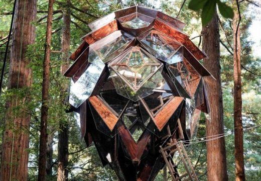 Да спиш в прозрачна шишарка в гората