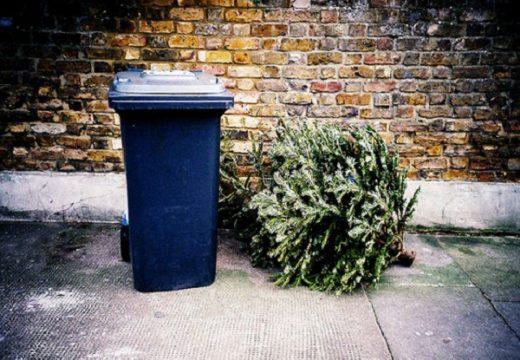 Столична община: Не си изхвърляйте елхите в кофите