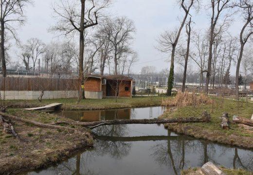 Започна последният етап от строителството на зоопарка в Пловдив