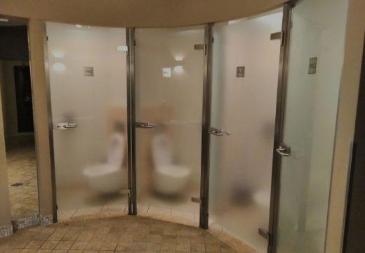 40+ от най-странните тоалетни по света