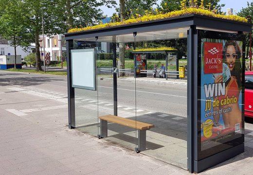 """Холандия превръща автобусни спирки в """"спирки за пчели"""""""