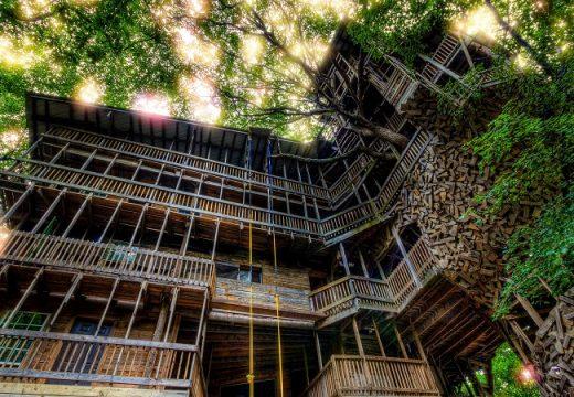 Най-голямата дървесна къща в света изгоря до основи за 15 мин.