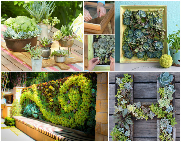 fabartdiy-DIY-living-Framed-Succulent-Garden-Wall-Decor-Tutorials