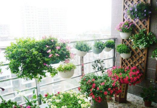 Идеи за тучна пролетна градина на балкона
