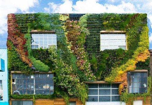 Фасада от тучна растителност