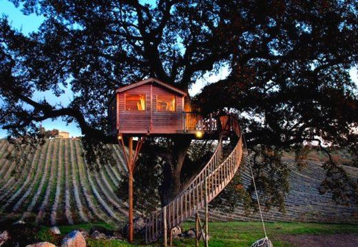 Виждали ли сте луксозна къща на дърво?