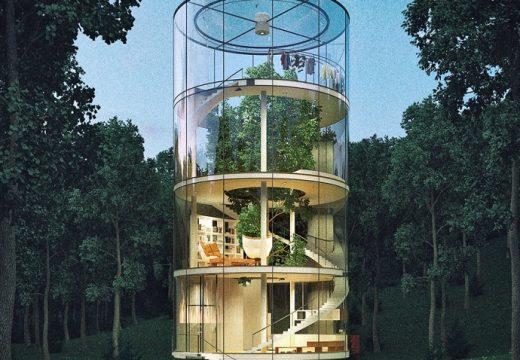 Стъклена къща се увива около дърво