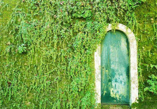 Врати, които водят към други светове