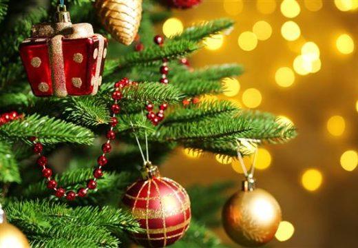 Коледната елха на София грейва в парка на НДК