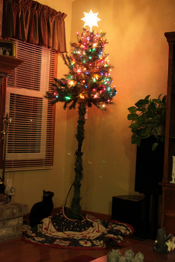 protecting-christmas-tree-from-dogs-cats-pets-5-585a660de18de__605