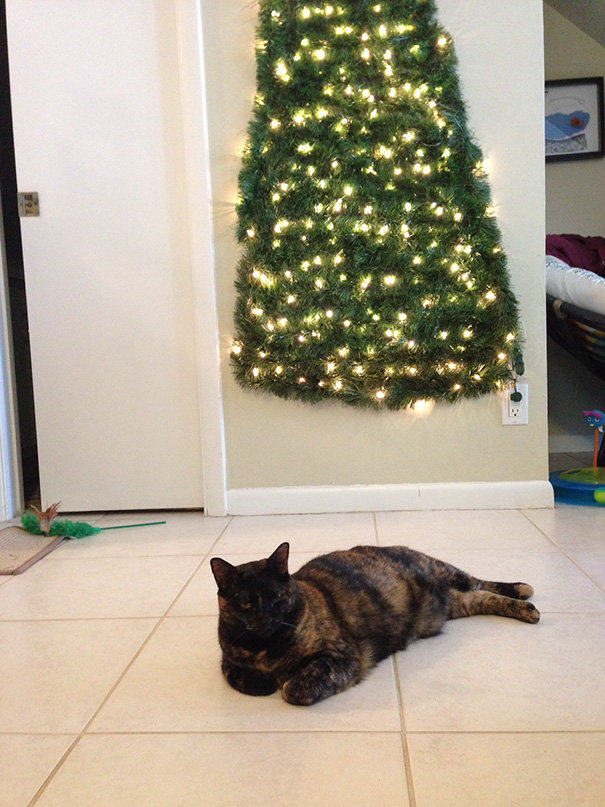 protecting-christmas-tree-from-dogs-cats-pets-6-585a66c36e602__605