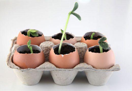 30+ хитри идеи за двора и градината