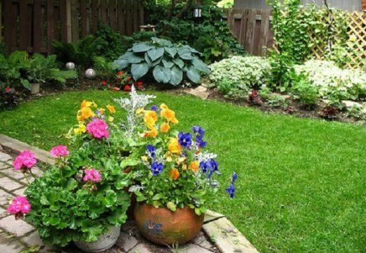 3 съвета за тревните площи в малки дворове
