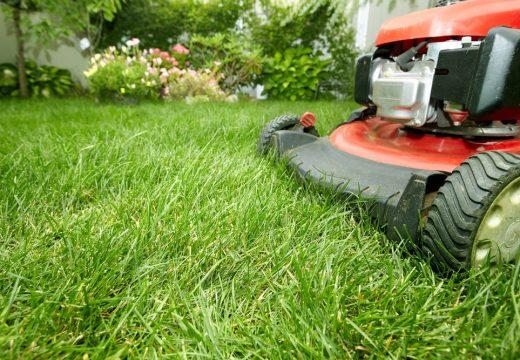 Колко често трябва да косим тревата?