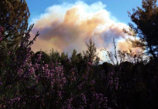 Гърция евакуира над 2000 души заради пожар в Пелопонес