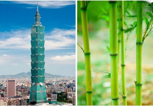 7 сгради, вдъхновени от природата